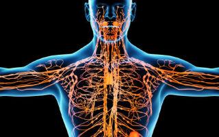Психосоматика, лимфоузлы на шее, взаимосвязь