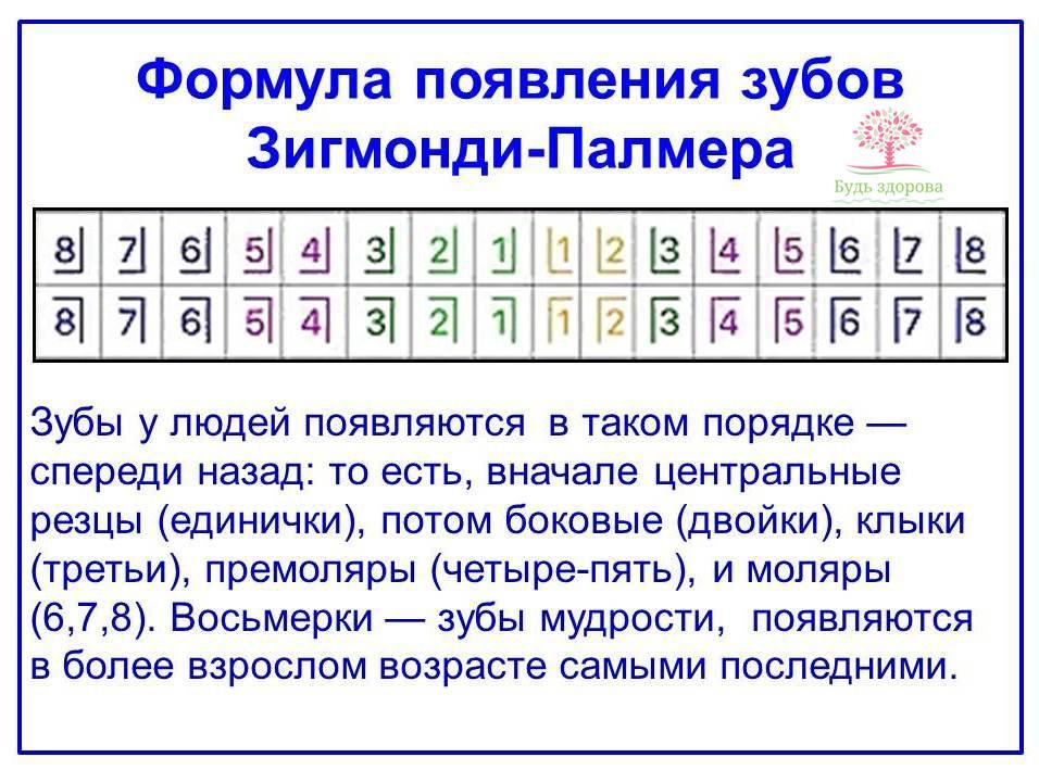 Формула Зигмонди-Палмера