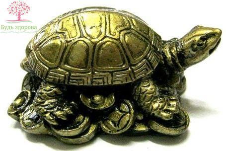 Черепаха талисман